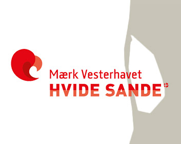 Booking Hvide Sande